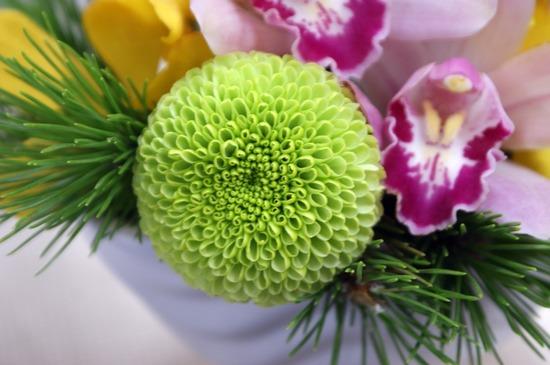 【日比谷花壇】とらや「干支小形羊羹5本入のセット」とアレンジメントのマム