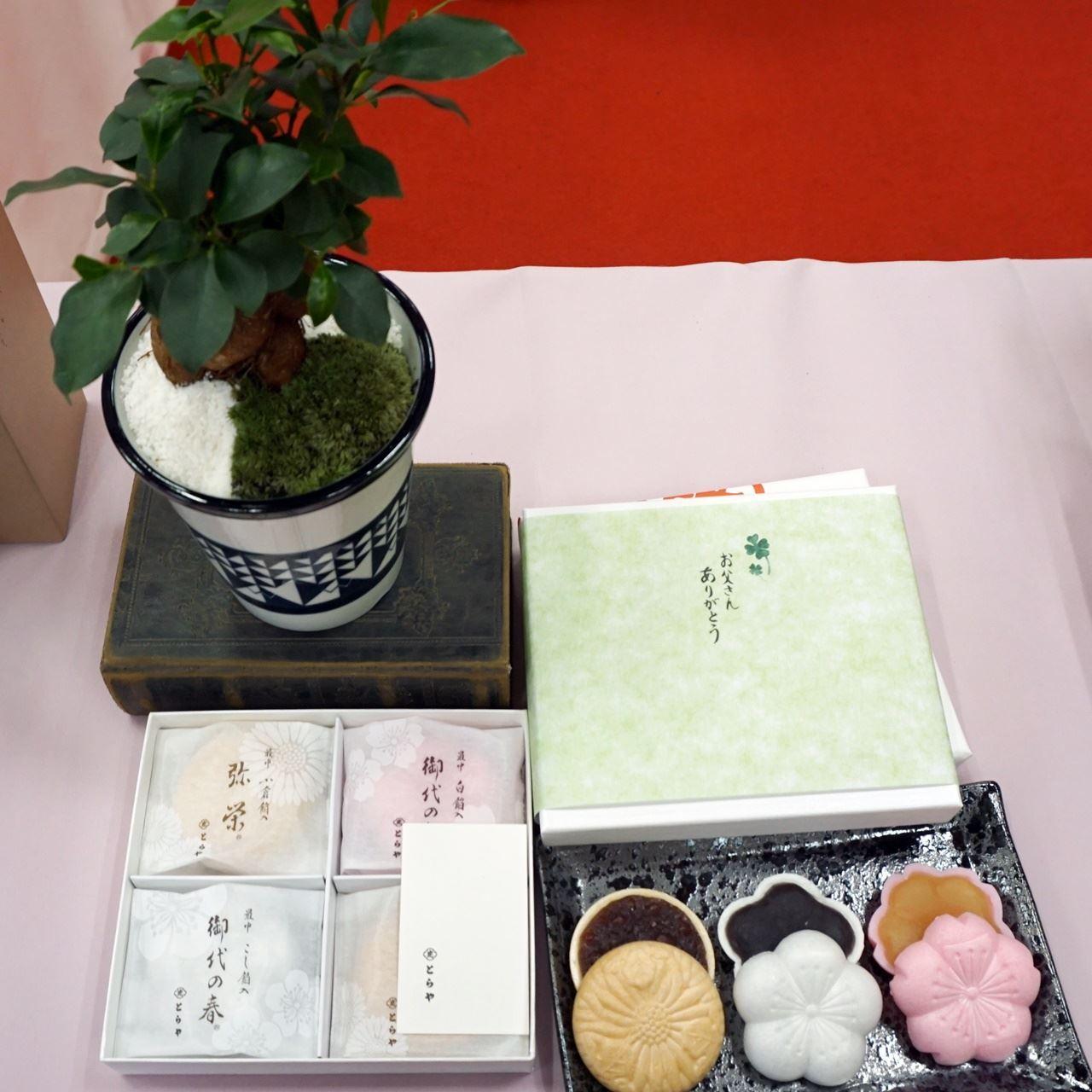 【日比谷花壇】父の日 とらや「最中」と観葉植物のセット