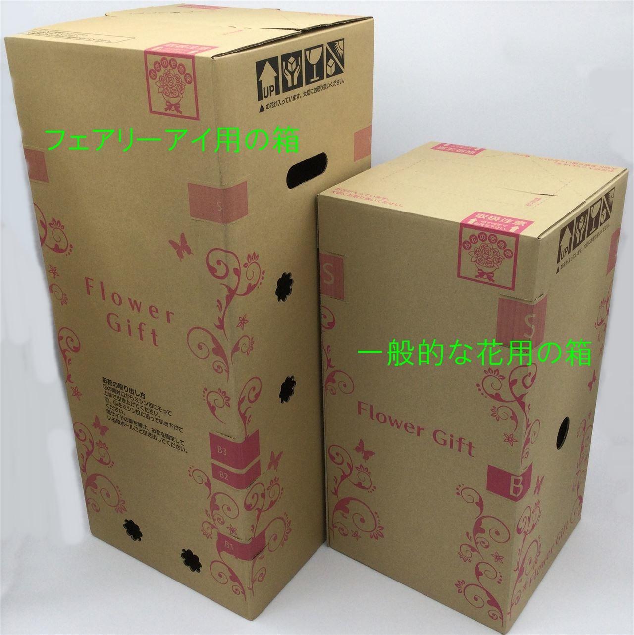 e87アジサイ鉢植えフェアリーアイ用箱
