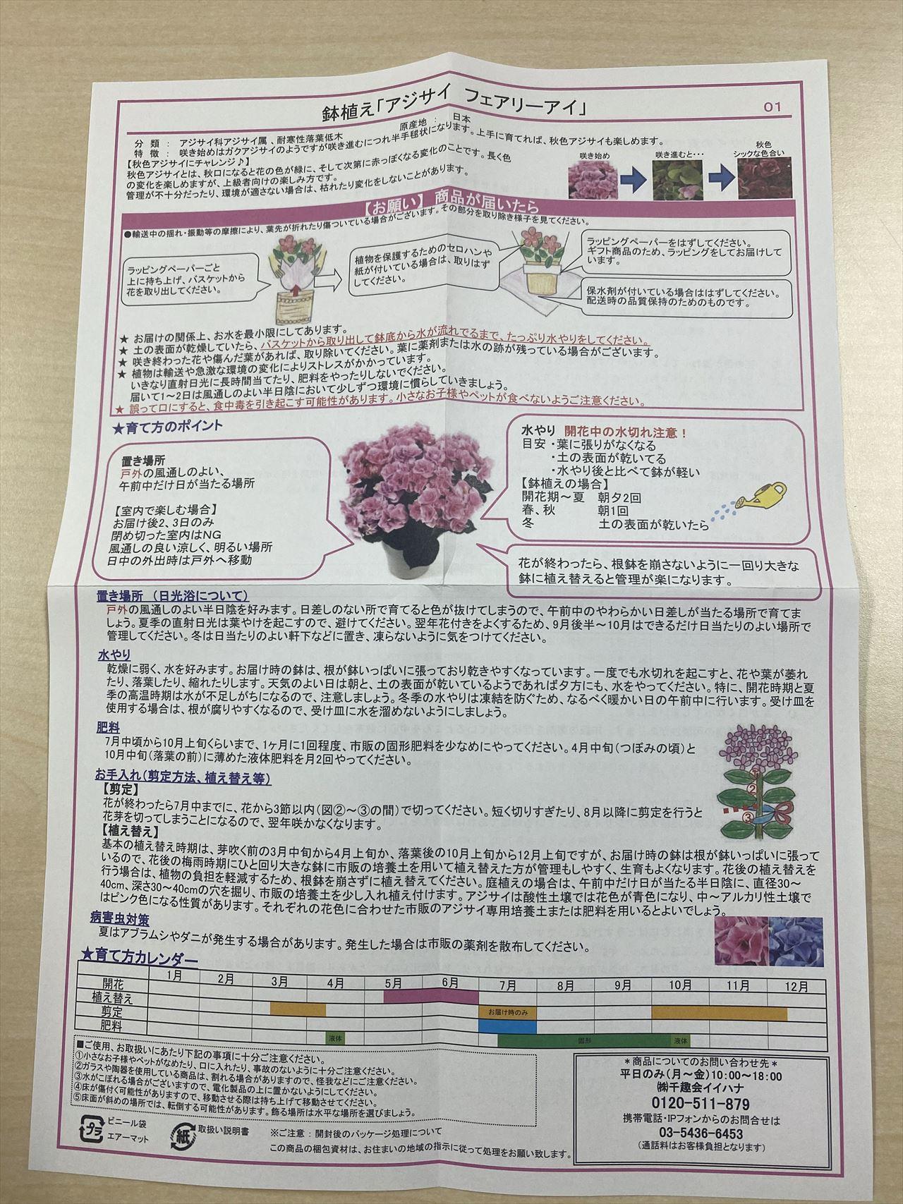 e87アジサイ鉢植え「フェアリーアイ」の栽培説明書